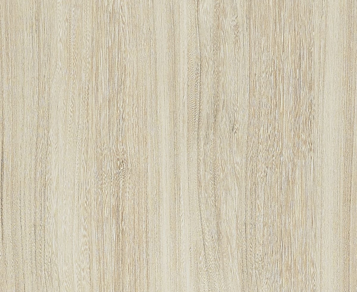 Bleached Elm